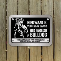 oldenglishbulldogd1bord